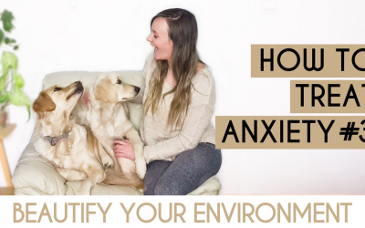 How To Treat Anxiety #3: Beautify Your Environment
