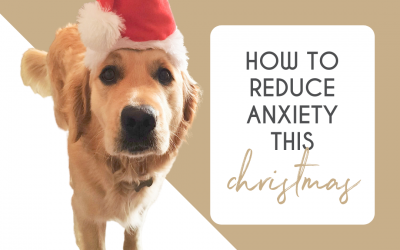 4 Ways To Reduce Your Anxiety This Holiday Season